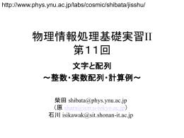 物理情報処理基礎実習II 第11回