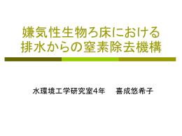 嫌気性生物ろ床における排水からの窒素除去機構