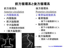 梗塞の病変部位 動脈支配による記載が重要