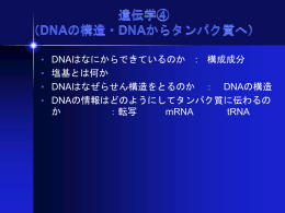 DNAの構造・DNAからタンパク質へ