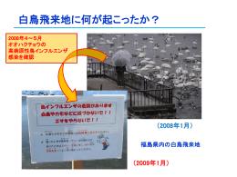 「091219dr.Koizumi powerpoint」をダウンロード