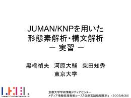 JUMAN/KNPを用いた 形態素解析・構文解析 実習