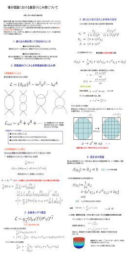 場の理論における厳密くりこみ群について