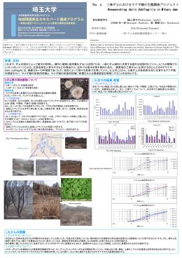 4,三春ダムにおけるヤナギ類の生態調査