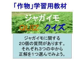 ジャガイモ - 鹿児島県