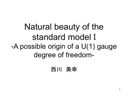 Natural beauty of the standard model I