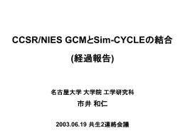 (経過報告) (ichii_03.06.19 126KB)