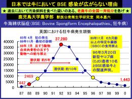 岡本の講演スライド:Okamoto(30分もの)