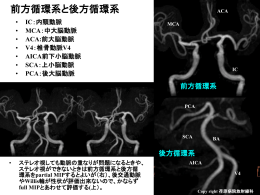 「classification_of_cerebral_arteries_2」をダウンロード