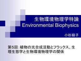 植物の光合成活動とフラックスと生理生態学と生物環境物理学の関係