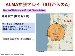 ALMA_WS_report20121126