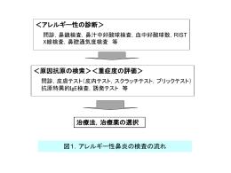 図表(PPT