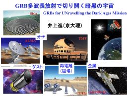 GRB多波長放射で切り開く暗黒の宇宙