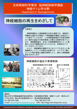 PowerPoint プレゼンテーション - 岡山大学医療系キャンパス 医療系総合