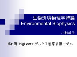 Big-Leafモデルと陸域生態系多層モデル