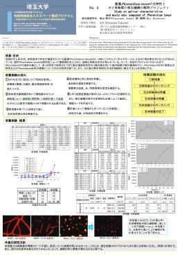 藻Phormidium enueの光特性とカビ臭物質の発生機構の解明