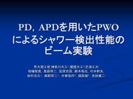 PD,APDを用いたPWO によるシャワー検出性能のビーム実験
