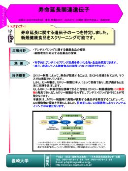 連絡先 - 長崎大学