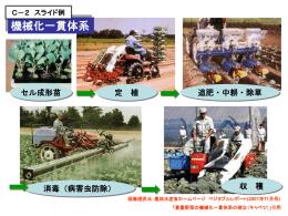 C-2 スライド例(Power pointファイル)