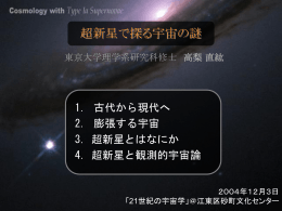 Cosmology with Type Ia Supernovae