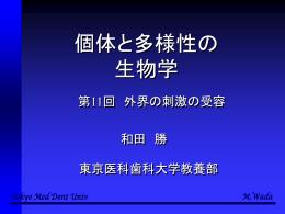第14回講義の内容 - 東京医科歯科大学