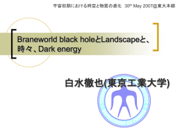 Braneworld Black HoleとDark Energy、そしてLandscape