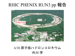 RHIC PHENIX RUN3 報告
