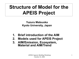 Structure of Model for the APEIS Project
