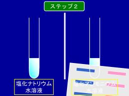 実践2_ステップ2_観察、実験の説明