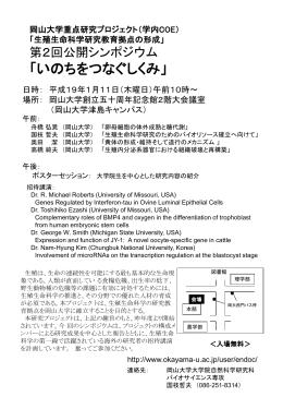チラシ (PowerPoint file)