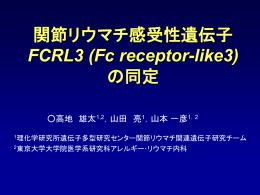 PPTファイル