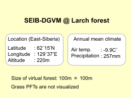 SEIB-DGVM @ Larch forest