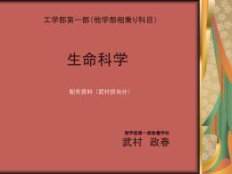 1 - 武村研究室