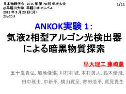 ANKOK実験 1: 気液2相型アルゴン光検出器 による暗黒物質探索