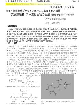 PDFダウンロード - 分子・物質合成プラットフォーム