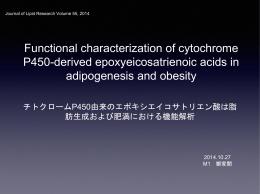 チトクロームP450由来のエポキシエイコサトリエン酸は脂肪生成および