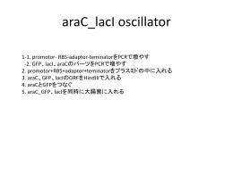 Step1. promotor- adaptor-teminator*PCR