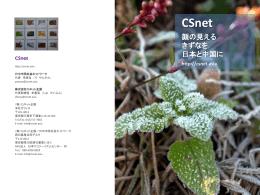 PowerPoint - 日中市民社会ネットワーク
