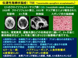 講演会(納教授+岡本) - 鹿児島大学 共同獣医学部 ホームページ