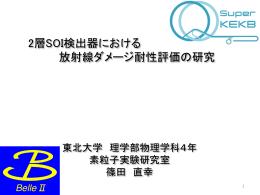 2層SOI検出器における放射線ダメージ耐性評価の研究(篠田 直幸)