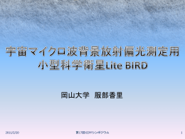 Lite BIRD