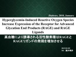 低酸素状態でのマクロファージにおけるAGE-RAGEシグナリングとEgr