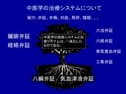 スライドB(Powerpoint形式) - 中医学研究所