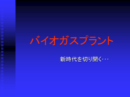 PowerPoint版3.66MB
