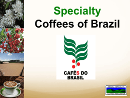 Ms. Vanusia Nogueira Specialty Coffees of Brazil