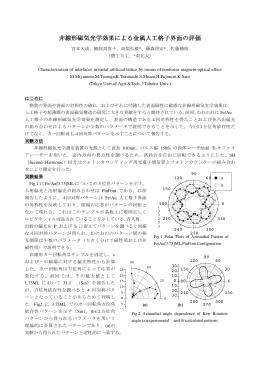 ダウンロード(PDF)