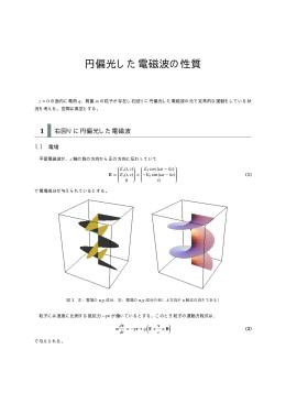円偏光した電磁波の性質