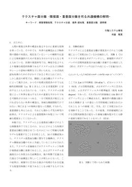 テクスチャ面分離 –隣接面・重畳面分離を司る共通機構の解明-