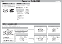 Operation Guide 3028