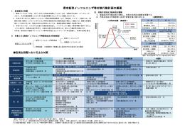 「堺市新型インフルエンザ等対策行動計画の概要(平成26年6月)」(PDF